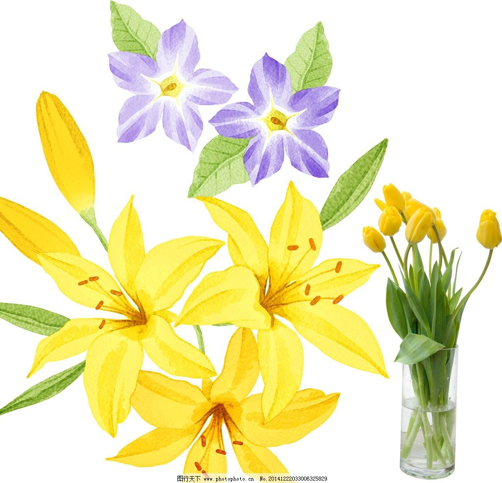 手绘花卉 梦幻花卉 植物花纹 手绘花朵 矢量 花草 鲜花 花朵 郁金香