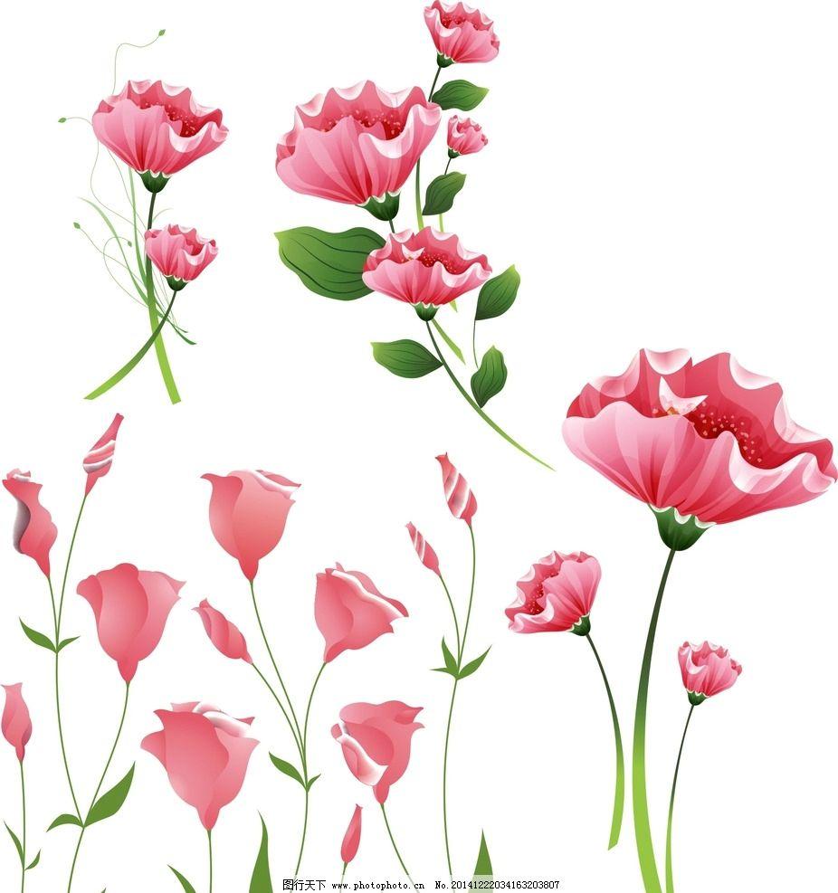 各种花朵 素材 花藤 盛开 绽放 可爱 手绘 鲜花矢量 绿叶 叶子 花朵