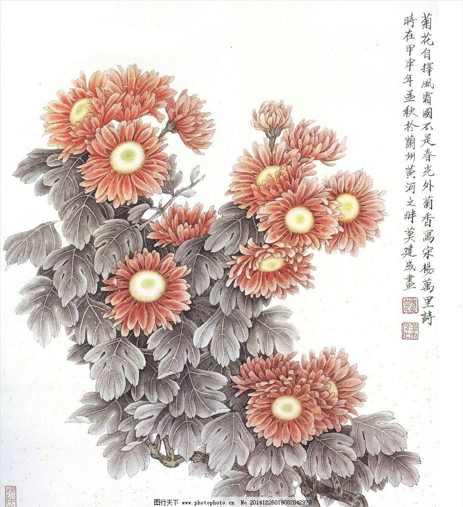 菊花工笔画图片