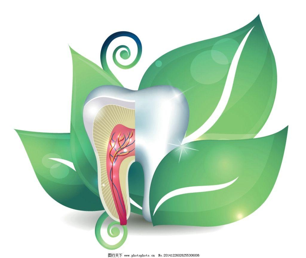 牙齿 牙齿健康 手绘 牙齿图标 绿叶 卡通设计 健康牙齿广告 牙医 矢量