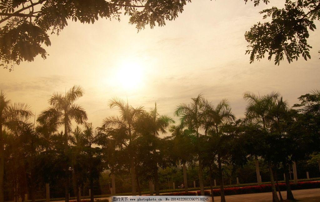海南岛 海边 沙滩 旅游 椰子树 摄影 旅游摄影 国内旅游 350dpi jpg