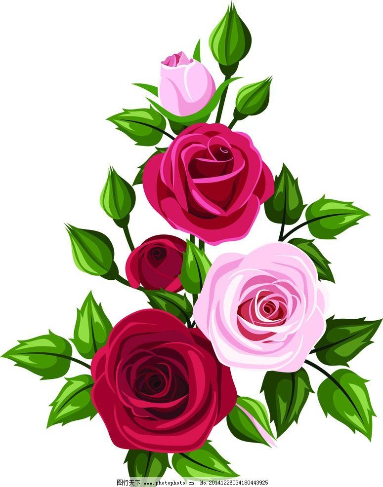 玫瑰花 七夕 情人节 手绘玫瑰花