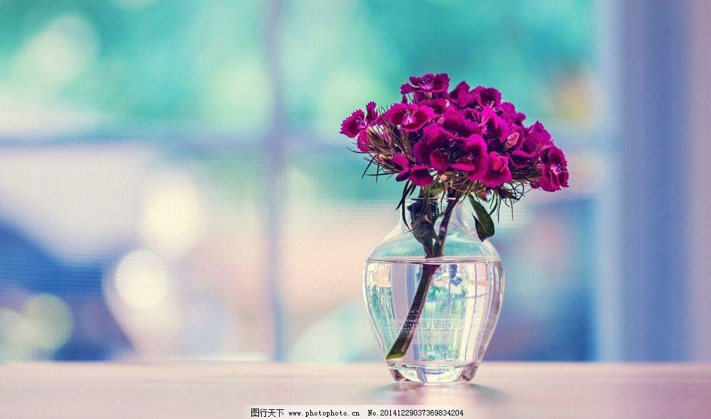 玻璃瓶中的插花图片