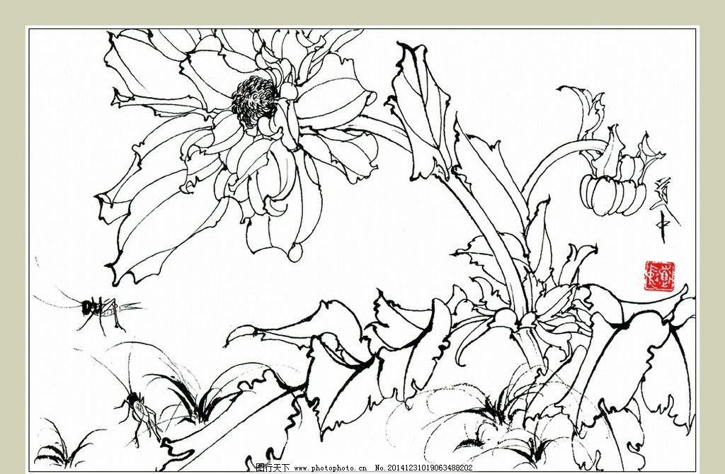 白描花卉大丽花图片