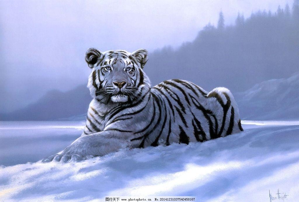 手绘白虎图片